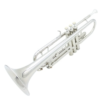 51% OFF Brass Trumpet Bb B Flat,limited offer $98.99
