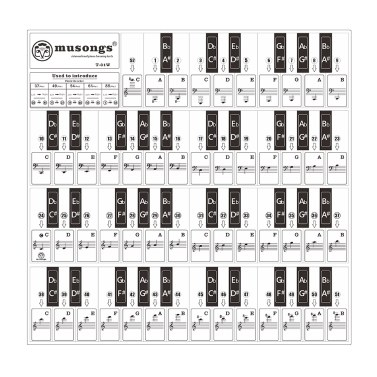 T-31W Removable Piano Keyboard Stickers