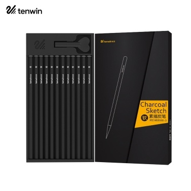 tenwin 12pcs Professional Charcoal Pencils Set