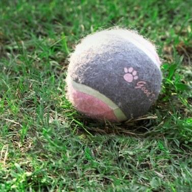 "Xiaomi Youpin 2,5 ""Hund Tennisball großes Haustier Spielzeug lustige Outdoor-Sportarten Hund Ball Geschenk"