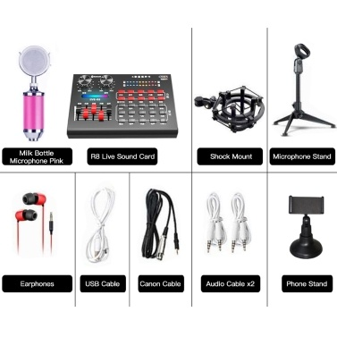 R8 Live Sound Card + Earphones + Microphone + Phone Stand + Microphone Tripod Stand