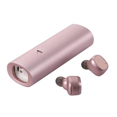 True Wireless BT Headphones