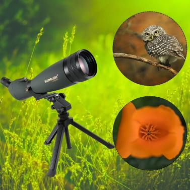 Vision 30-90X90 gewinkelt Wasserdicht Spektiv im Freien wandernder Vogel mit Stativ Beweglicher HD Monocular-Teleskop beobachten
