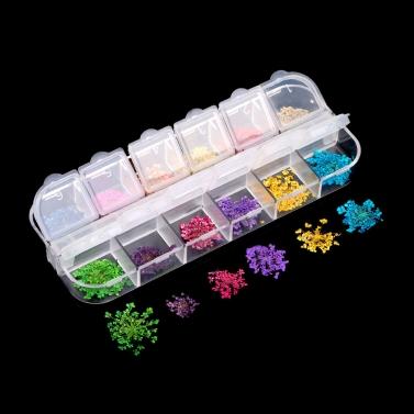 12 Farben echte Nagel getrocknet Nail Art Blumen dekoration DIY Tipps mit RS kleine Blumen