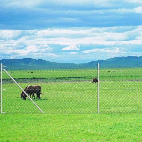 Zincato catena di recinzione link con Bodenanker15 x 0,8 m