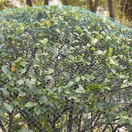 anti-bird Nets 2 pezzi 6x6 m PE