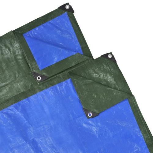 Housse protection Bâche de jardin 10 x 1,5 m 100 gsm Verte/Bleue