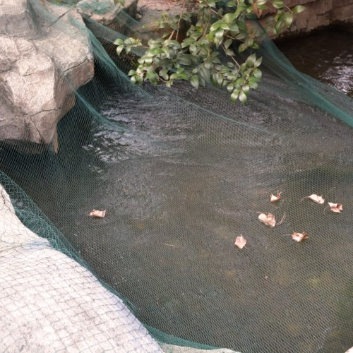Cover net for pond 10 x 6 m PE