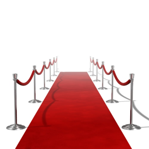 Red Carpet 1 х 5 м