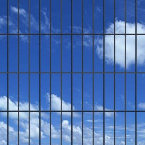 doppia asta di Matt recinzione recinzione del giardino e posto 2008x830 mm 30 m grigio