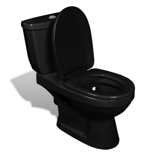 Toilet With Cistern Black