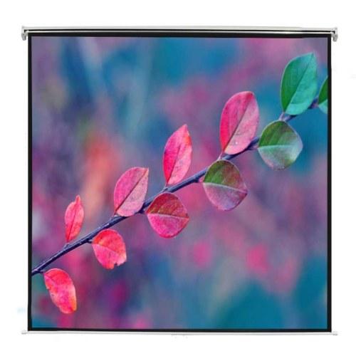 manual projection screen 160 x 160 cm matt white 1: 1 wall
