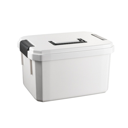Portable Storage Organizer with Handle Small Box Separate Compartments Containers for Travel Pocket