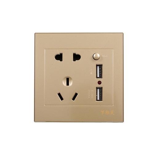 Электрическая розетка с 2 розетками и 2 USB-портами для настенного монтажа (золото)
