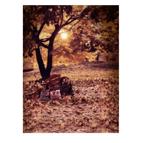 1,5 * 2m / 4,9 * Tło 6.5ft Fotografia tle Computer Printed Jesień Wzorzec dla dzieci Kid Dziecko Noworodek Pet zdjęcie portret studio fotografowania