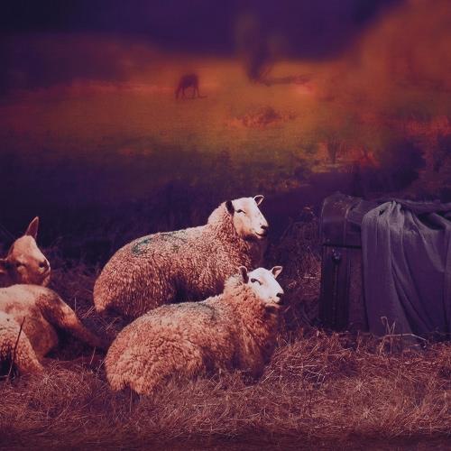 Image of 1.5 * 2m / 4,9 * 6.5FT Fotografie Hintergrund Computer ausgedruckt Bauernhof Sheep Muster für Kinder Jugendliche Baby Neugeborenes Haustier-Foto-Studio-Portrait Shooting