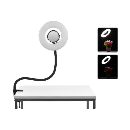 Lampe de table 8inch 5500K LED Ring Video