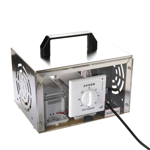 20g/h Portable 220V Ozone Generator Disinfection Machine