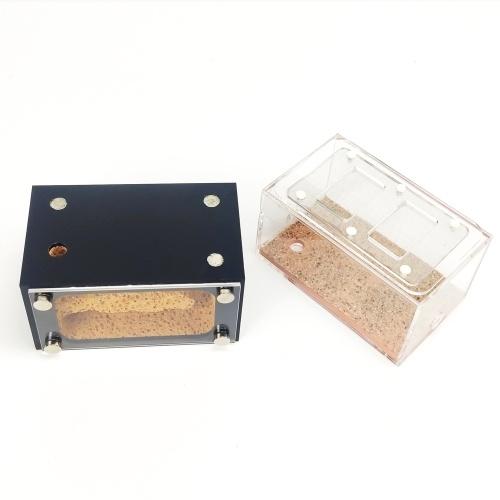 Fai da te Antgranery Schiuma Area di alimentazione in cemento Acryl Ant Farm Ants House Regalo di compleanno Regalo