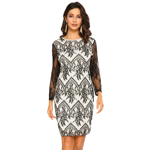 6a0a3bcab5e Sexy Women Floral Lace Dress Sheer O-Neck Long Sleeve Zip Nightclub Party  Mini Pencil