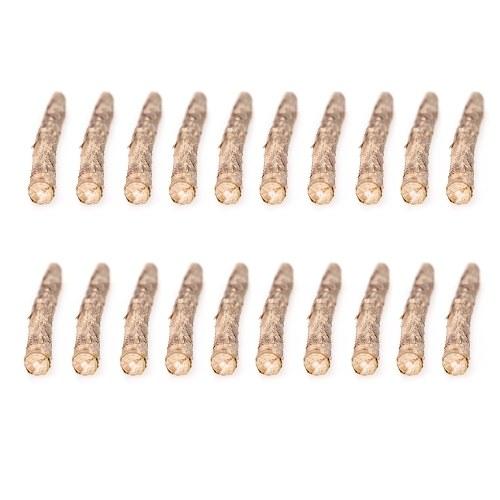 20 bâtonnets de Catnip Cat Naturel