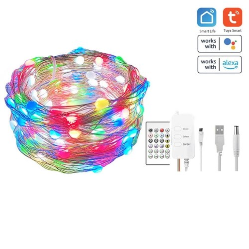 Tuya wifi Strips Lights LED Timing Light with Remotes Control