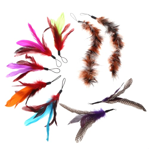 9PCS luxe Colorful Kitten naturelles longue plume Pet Cat Teaser Design Mignon remplacement Recharge Feather pour Cat Rod Wand