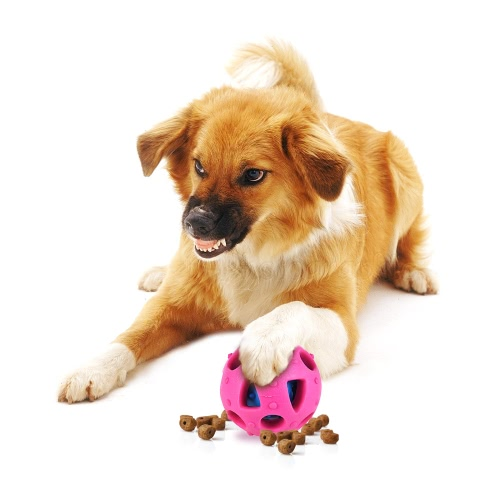 Giocattolo di gomma termoplastica non tossico Tratta palla palla bouncy per cani e gatti Interactive Educational Pet Toy