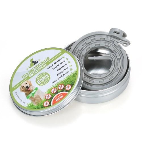 Prevenzione trattamento collare pulci e zecche per cani