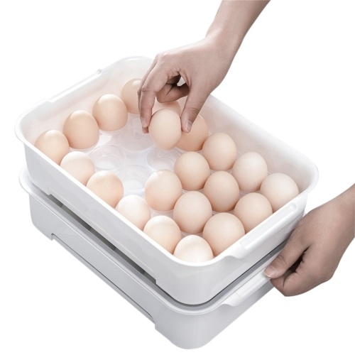 24 Grids Egg Trays