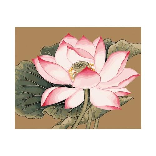 DIY pintura al óleo sobre lienzo pintura por número Kit Lotus Lily flor patrón para adultos niños principiantes artesanía hogar decoración de pared regalo