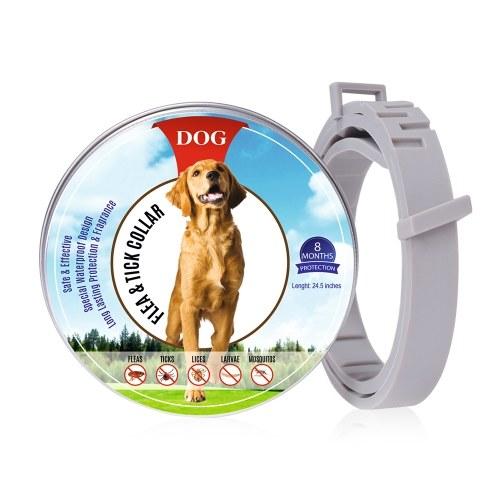 Ошейник от блох для собак 8-месячная профилактика от блох и клещей для собак от 3 месяцев и старше 2 УПАКОВКИ фото