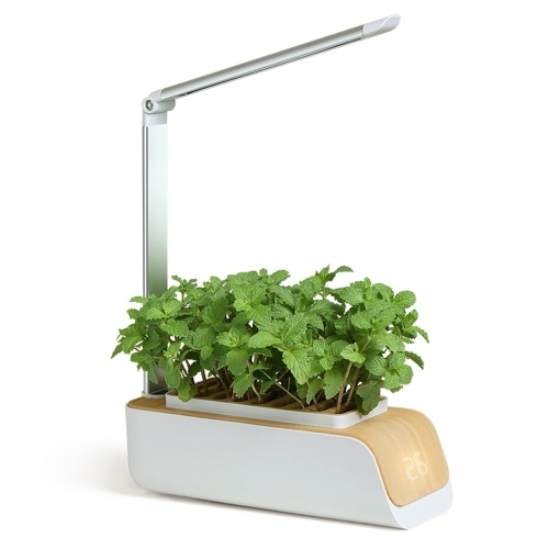 Hydroponics Growing System Indoor Herb Garden Kit with Grow Light