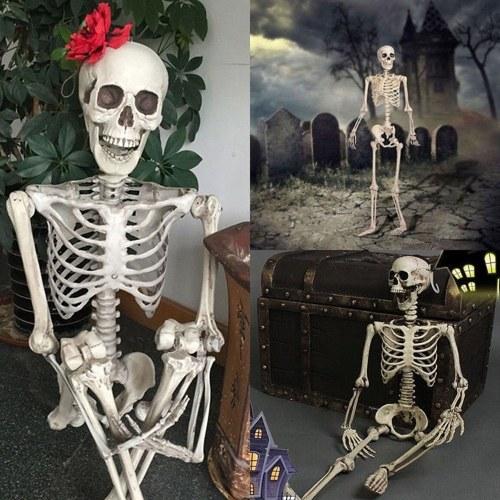 Моделирование Хэллоуина Висячий скелет Кость человеческого тела