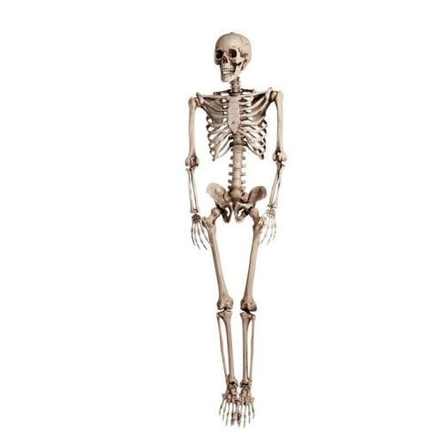 Halloween Simulação Pendurado Esqueleto Humano Osso Do Corpo (900 * 250 * 150mm)
