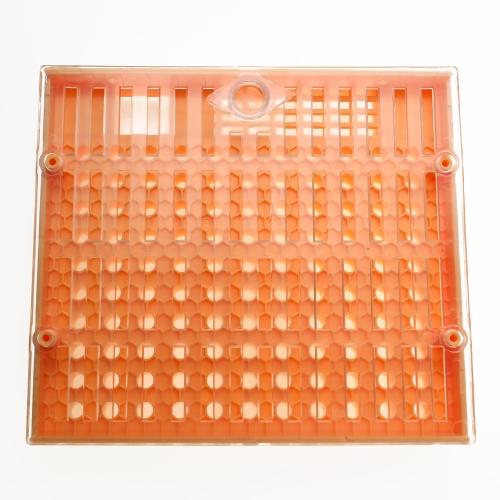 Die Werkzeuge der Bienenzucht, die 1pcs Königin Bear Aufzuchtschale Kit Box enthalten 110pcs Brown Cell Cups und 30pcs Cotrol Käfige können von Imkern verwendet werden