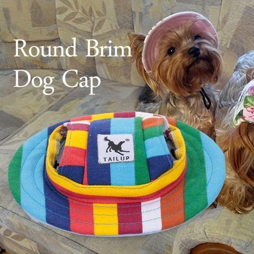 Cappello tondo a tesa larga con cappuccio per cane Cappuccio a forma di cappellino con fori per orecchie per cucciolo di cane medio