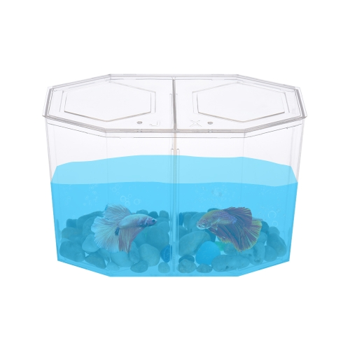 Petit poisson aquarium Betta Box Elevator House avec diviseur acrylique transparent