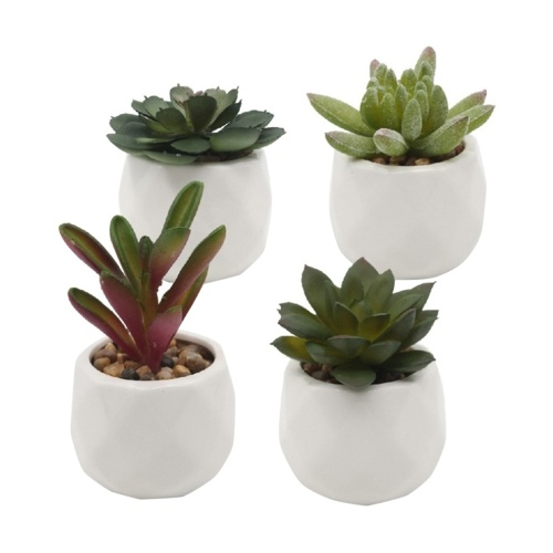 Conjuntos de plantas artificiais para simulação de plantas artificiais com 4 unidades em vasos de suculentas falsas Suculentas em vaso de cerâmica
