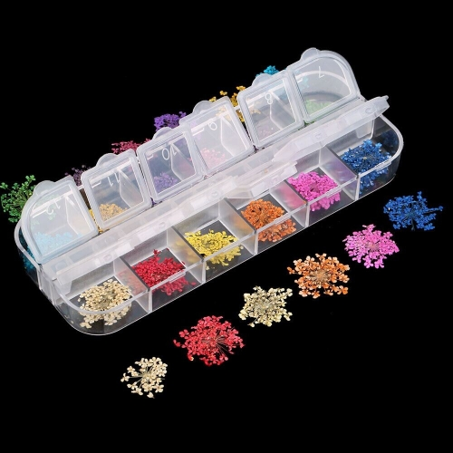 Rs. 12 Zelle leer Transparent Kunststoff Speicher Perlen zum Speichern von falscher Glitter Strasssteine glänzende Blätter Dired Blume oder andere Nail Art Produkte