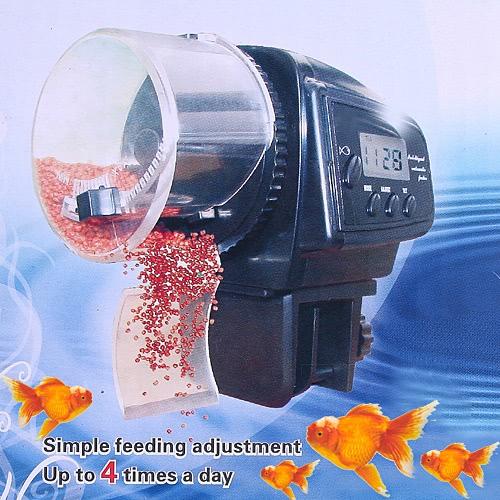 Automatische Fisch Fütterunsanlage