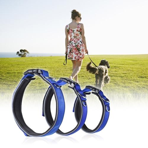 Collar de perro fuerte y resistente