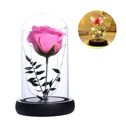 Simulation Rose Flower Glass Cover LED String Light Home Night Light Decoration Valentine's Day Birthday Gift