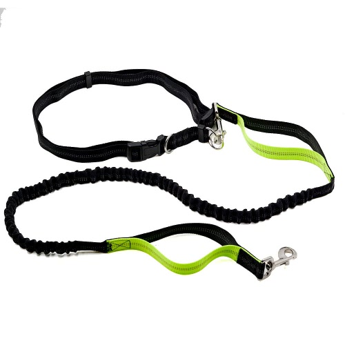 Handsfree Bungee Dog Leash Elastic Adjustable Durable Reflective Stitching Shock Absorbing Adjustable Waist Belt for Running Jogging Walking