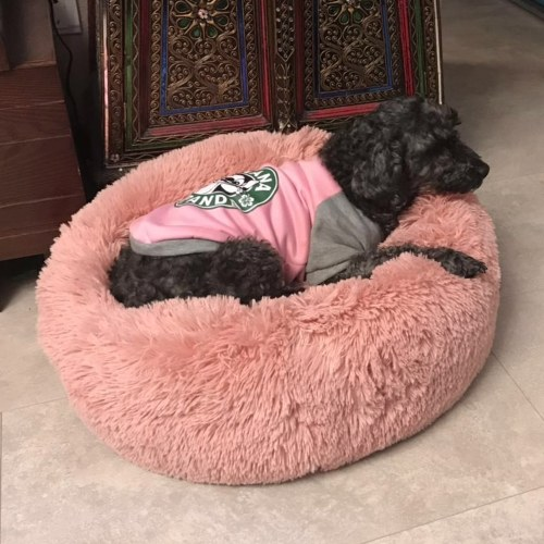 Round Plush Cat Bed Dog House Puppy Cushion