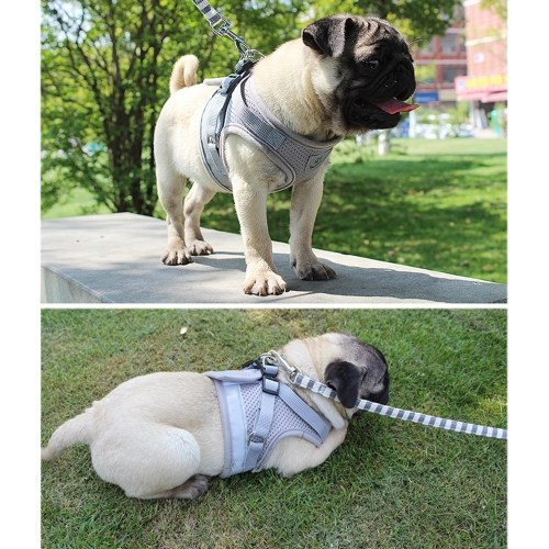 Dog Harness No-Pull Pet Harness Step-in Air Dog Harness, Soft Mesh Cat Harness, Step in Vest Harness Adjustable Outdoor Pet Vest, Reflective Harness for Pet Kitten Puppy Rabbit, (Blue,XS)