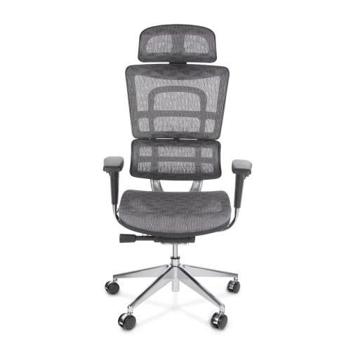 iKayaa multi-fonction Mesh réglable ergonomique Bureau Chaise pivotante Ordinateur exécutif Fauteuil de bureau W / Support lombaire Tilt Glisser Têtière Passe ANSI / BIFMA standard