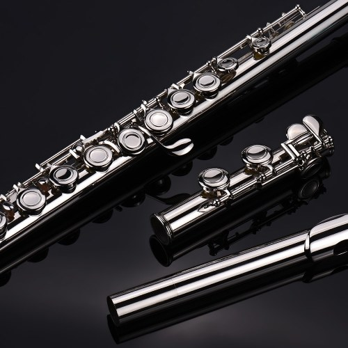 16 Holes C Key Western Concert Flute