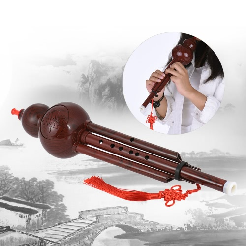 Chinese Handmade Hulusi Resin Gourd Cucurbit Flute Ethnic Musical Instrument with Case Key of C for Beginner Music Lovers as Gift