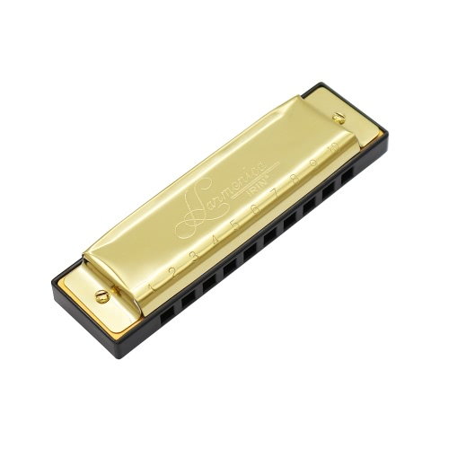 10 Holes 20 Tone diatonica Blues Harmonica chiave di C con il caso per principianti bambini d'oro